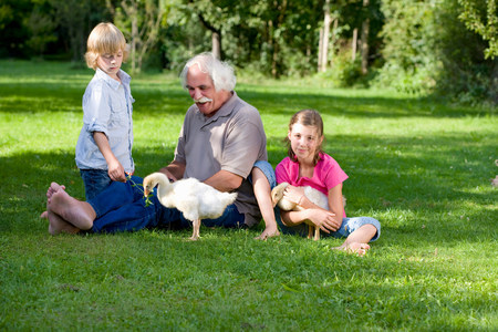 Grandfather and grandchildren with geese 写真素材