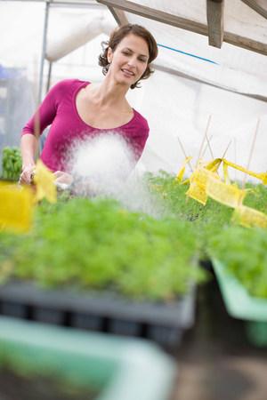Farming vegetables and fruits Foto de archivo