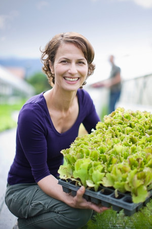 Farming vegetables and fruits Stock Photo