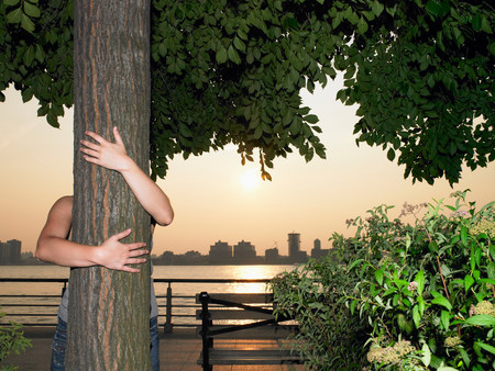 Woman hugging a tree Stock Photo
