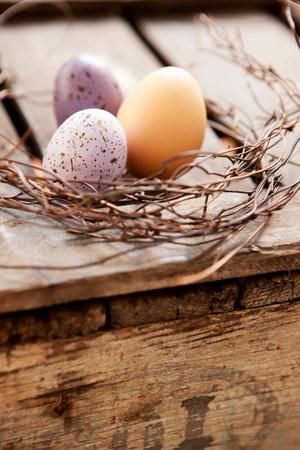 Eggs nestled in twig wreath