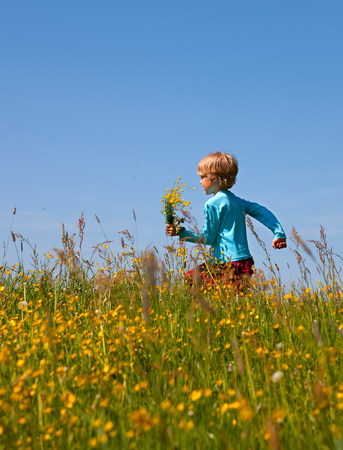 Boy walking in field of flowers