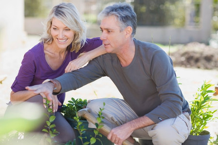 Couple examining garden together