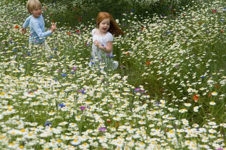 Children running in field of flowers Stok Fotoğraf
