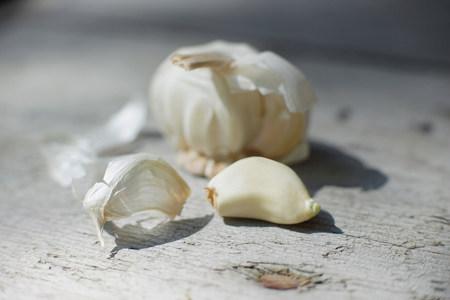 Close up of garlic clove Imagens
