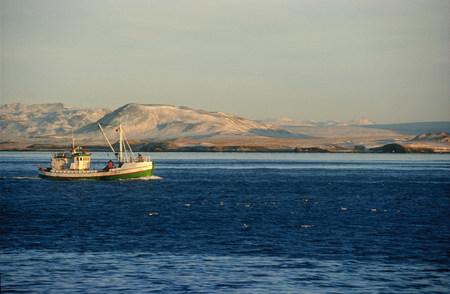 Fishing boat sailing in bay