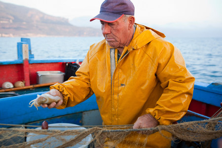 Fisherman holding squid on boat