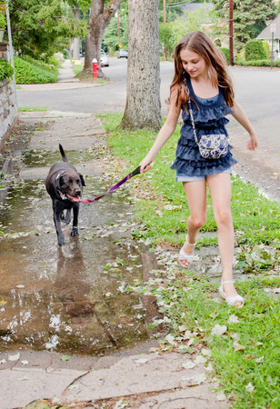Girl walking her dog in puddle Imagens