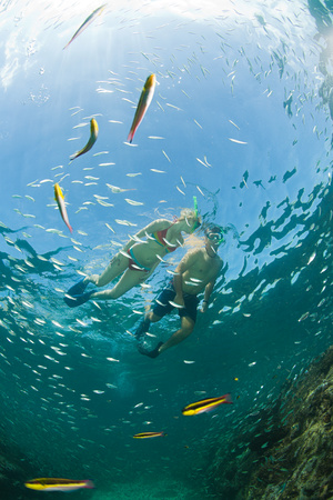 Couple snorkeling background.