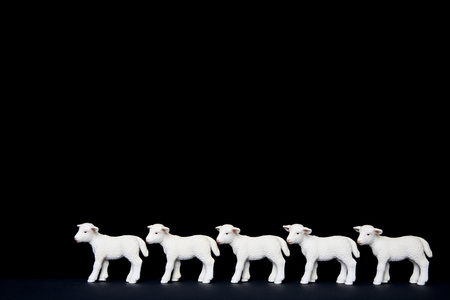 Five toy lambs in a row Reklamní fotografie
