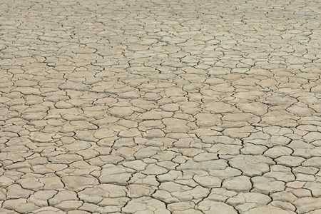 Cracked surface of dry lake bed