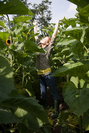 Young woman stretching in sunflower field