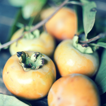 Persimmon fruit background.