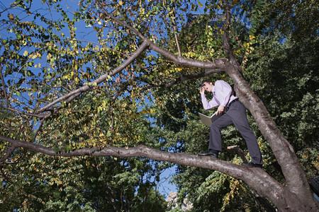Office worker using binoculars on a tree