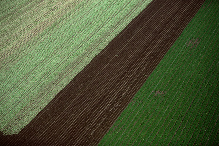 Aerial view of arable farm