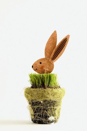 Wooden rabbit in grass