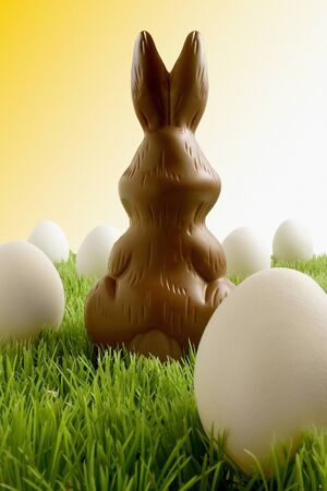 Chocolate easter bunny and eggs Stock fotó