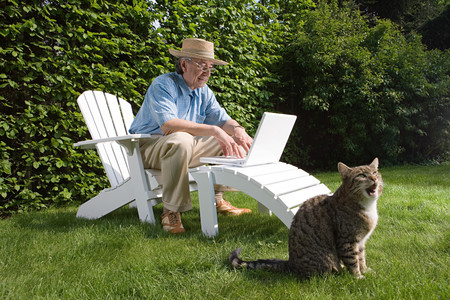 Man in garden with laptop and cat Stockfoto