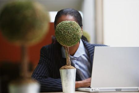 Businesswoman hiding behind bonsai tree Imagens