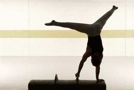 Male gymnast performing on pommel horse Foto de archivo - 124594781