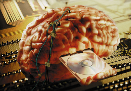Brain wired information Фото со стока