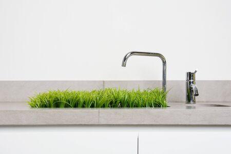 Gras wächst aus einem Waschbecken Standard-Bild
