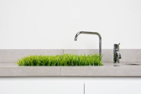 Grass growing out of a sink Stockfoto