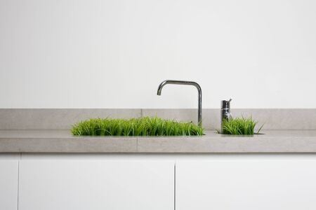 Grass growing out of a sink
