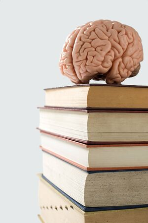 Brain on a pile of books