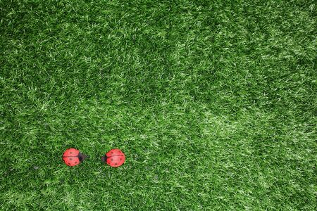 Toy ladybirds on fake grass