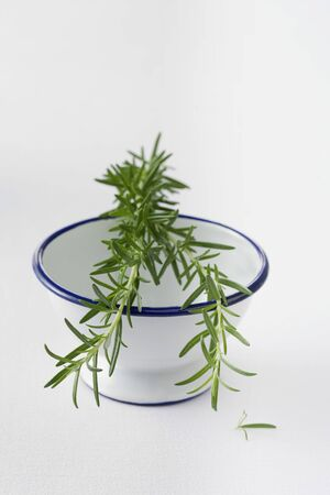 Rosemary on top of a bowl Imagens