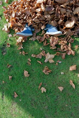 Man buried in leaves