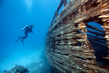 Diver By Wreck