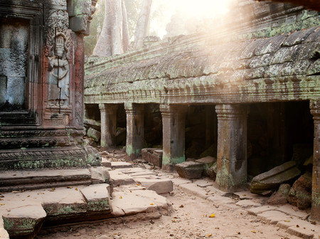 Ta Prohm Temple At Angkor, Siem Reap Province, Cambodia 스톡 콘텐츠