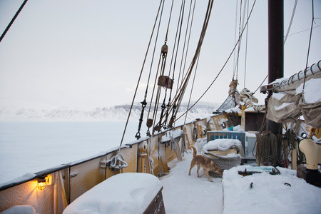 On Deck Of The Noorderlicht, A Dutch Schooner. Each Year The Nooderlicht Is Frozen Into The Ice In Spitsbergen, And Serves As An Excellent Base Camp In The Wilderness, Perfect For Spotting Polar Bears Reklamní fotografie