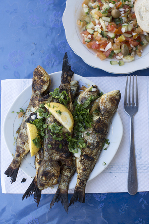 Cooked Fish On Plate, Djerba, Tunisia