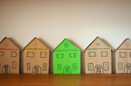 One Green Cardboard House Amongst Others