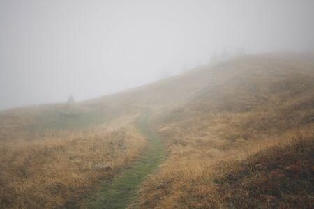 Misty Mountain Path, Flaine, French Alps, France
