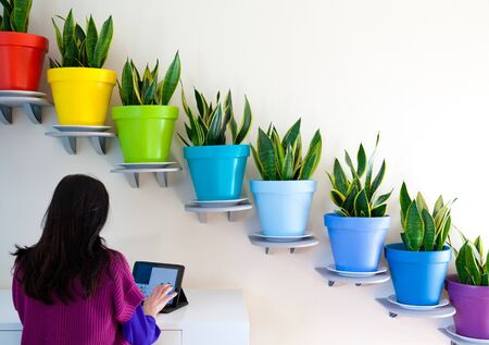 Rear View Of Woman Using Digital Tablet In Front Of Diagonal Row Of Potted Plants 스톡 콘텐츠
