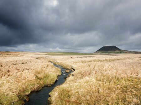 View Of Marshland And Slemish Mountain, County Antrim, Northern Ireland, Uk Foto de archivo