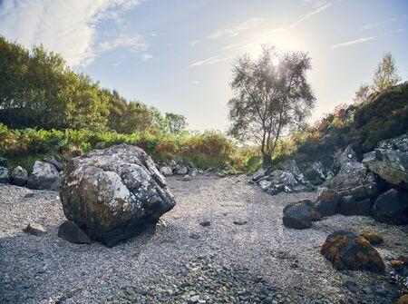 Boulders And Shrubs On Rocky Landscape, Highland, Scotland Stock Photo