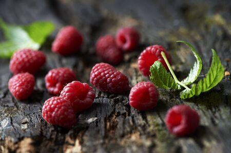 Raspberries And Leaves On Tree Bark Imagens