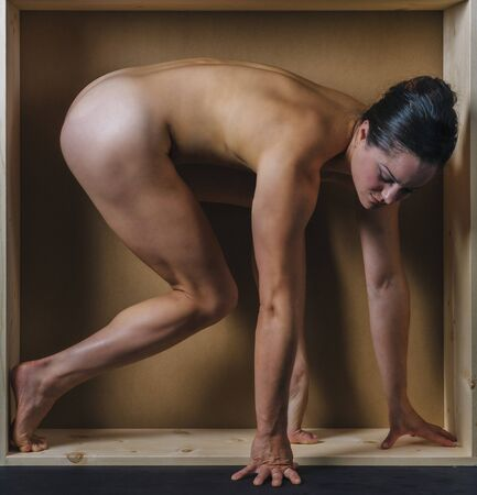 Naked Woman On All Fours In Box