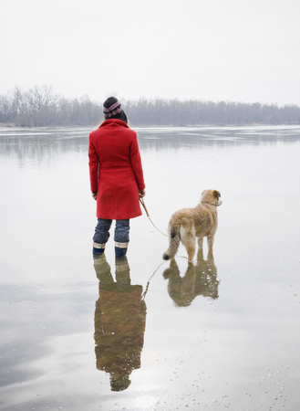 Young woman standing in river with dog on lead, rear view