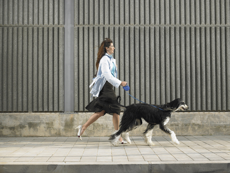 Woman walking with Afghan Hound down pavement in a breeze, Alicante, Spain,