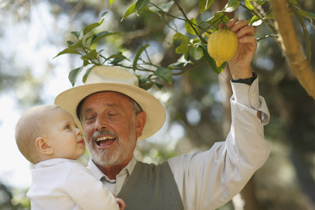 selections: Grandfather showing lemon tree to baby