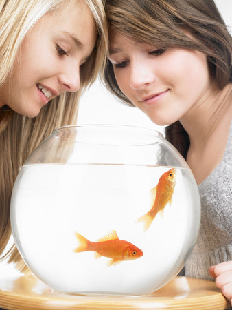 gals: Girls looking at goldfishes in aquarium LANG_EVOIMAGES