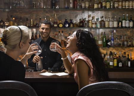 Male bartender talking to customers LANG_EVOIMAGES