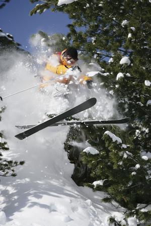 pila: Skier jumping through trees LANG_EVOIMAGES