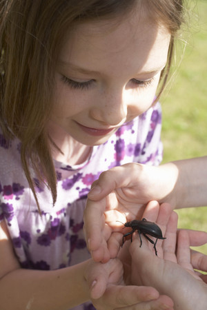verticals: Young girl looking at an insect